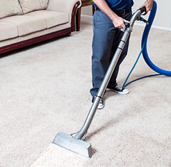 Carpet Cleaning Minneapolis Daisy Carpet Cleaners